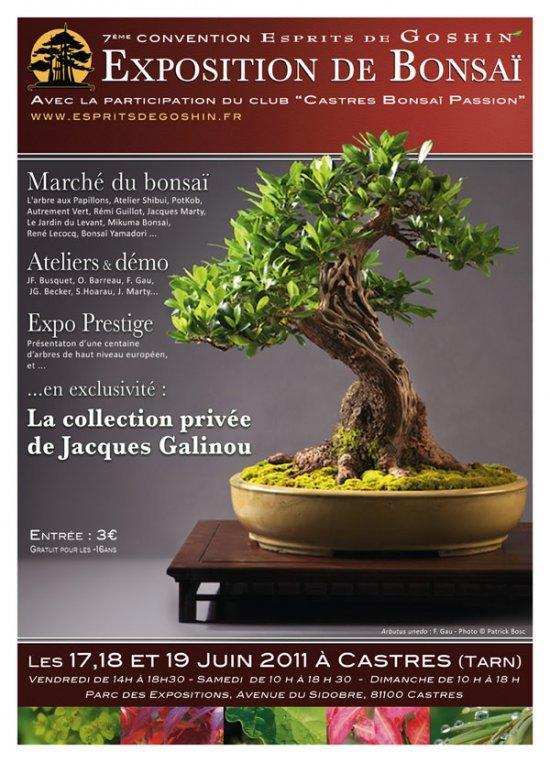 Castre 17 , 18 et 19 juin expo bonsai 11061710