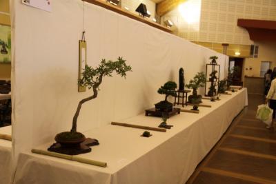 expo Sainte Tulle (04) Autre_10