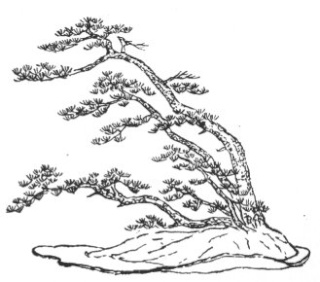 GLOSSAIRE Fukina10