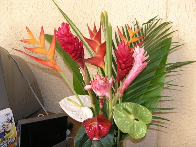bouquet des caraibes P4017710