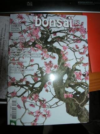 france bonsai 83 P5077810
