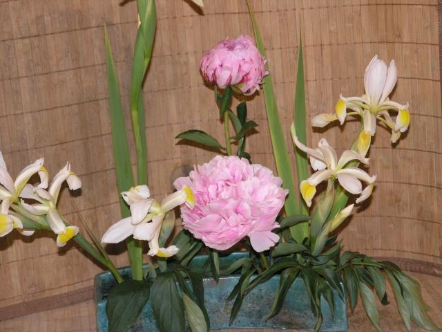 expo toulouges 7 et 8 mai 2011 P5087913