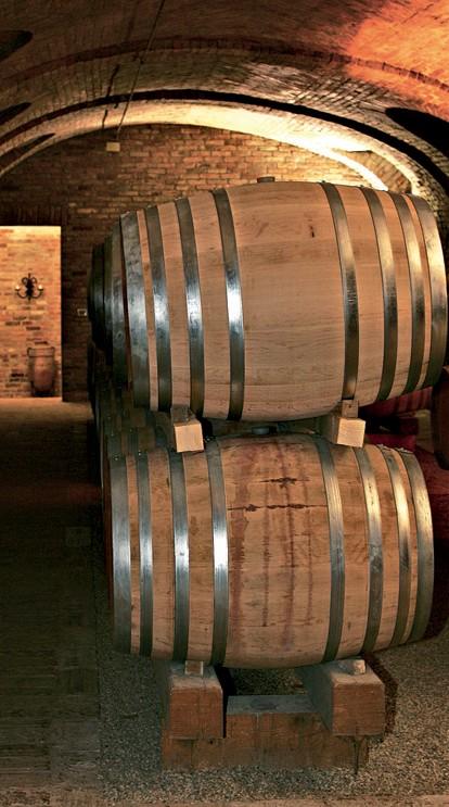 Monferrato: da Asti al Castello di Moncucco, girando fra le stradine delle terre vinicole Monfer11