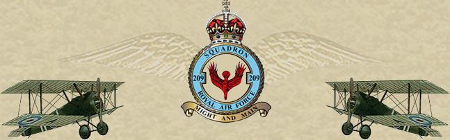 RAF 209 Squadron