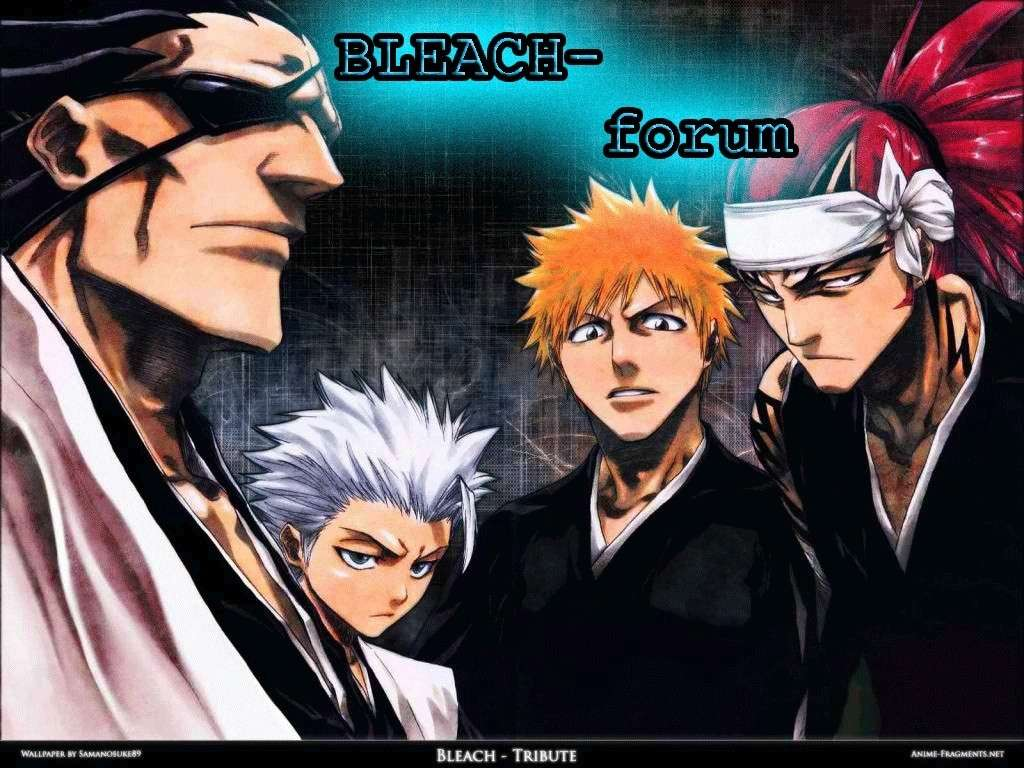 bleach-fan