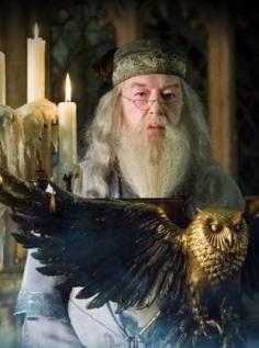Harry Poter Dambld10