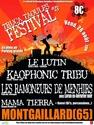 Festival des Truca Taoules le vend 26 aout 2011 Visuel11