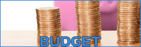 Demande Safet Susic - Page 2 Budget18