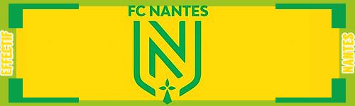 Banniere effectif S4 Nantes12