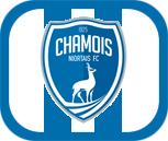 Bannière Club Niort10