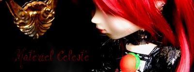 """Concours de bannières n.20: """"la couleur rouge"""" - Page 2 Rouge110"""
