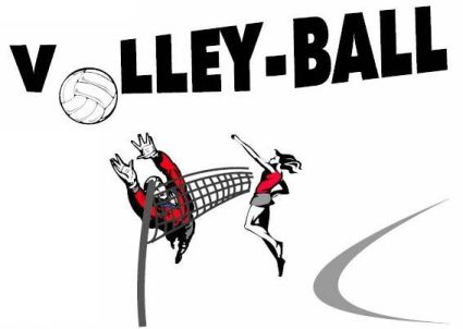 volley ball St didier en Velay 31562610
