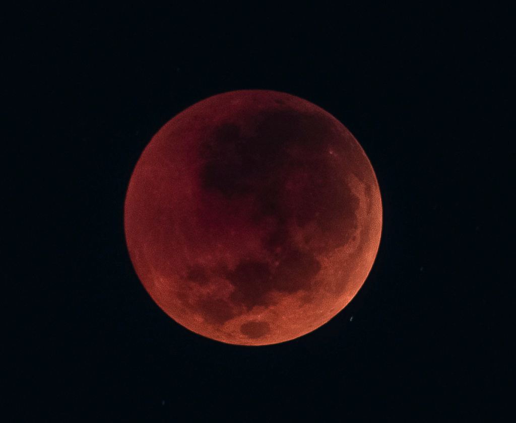 A few of the blood moon Eclips10
