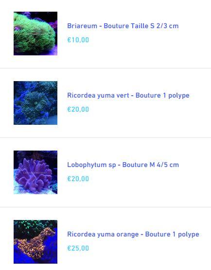 Nano 30l d'Aquadrien - Page 2 Captur10