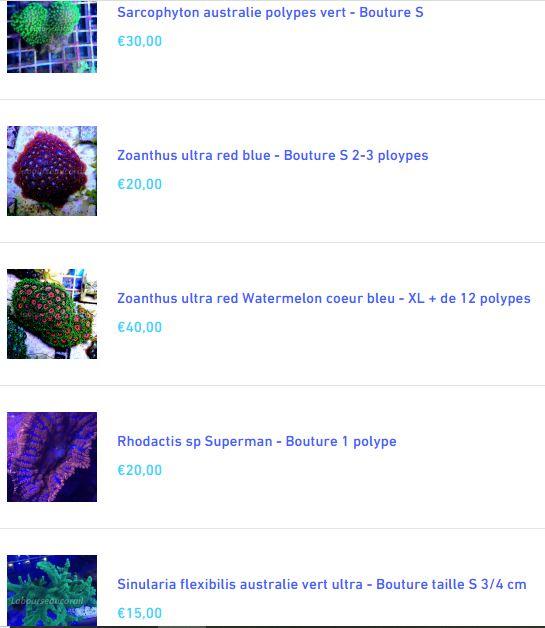 Nano 30l d'Aquadrien - Page 2 Captur11