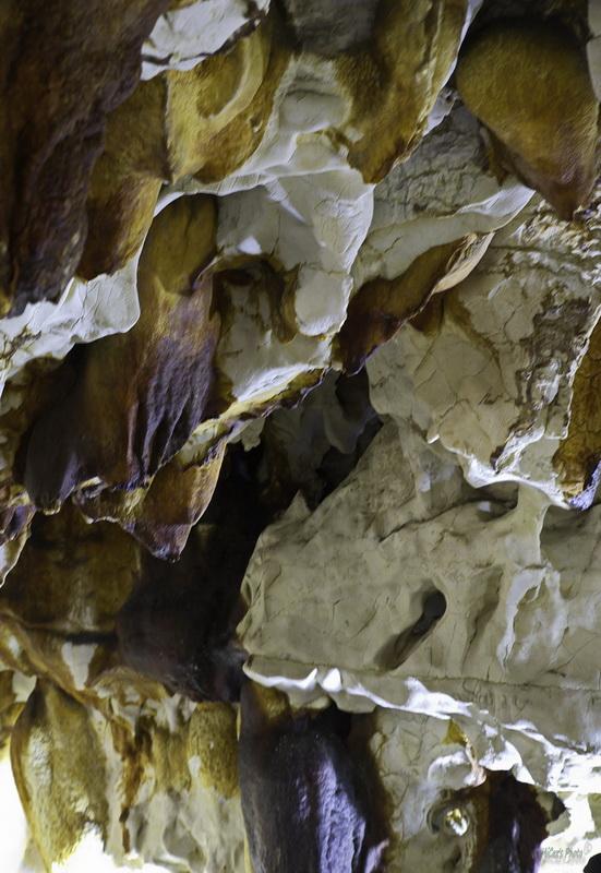 La grotte de Thaïs Thais611