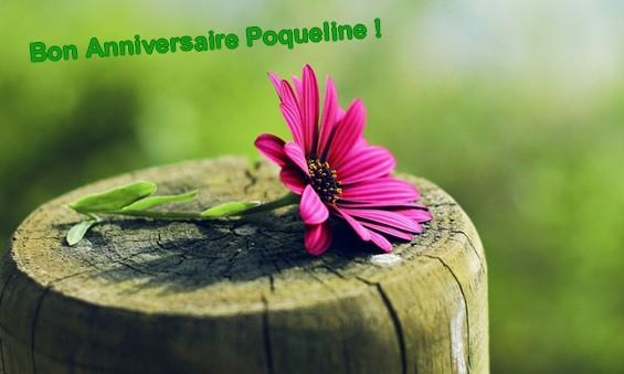 Poqueline day <3 Poqul10