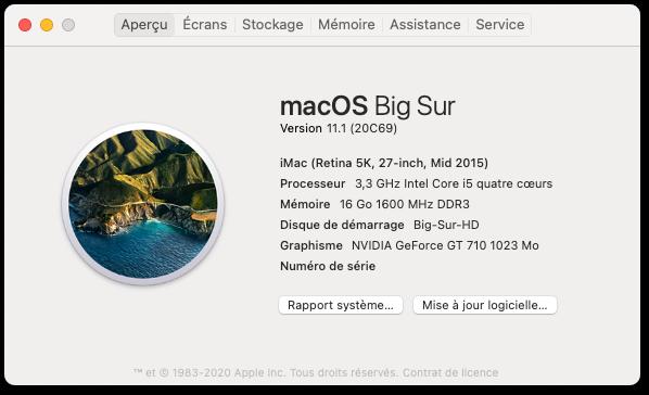 Mise a jour macOS Big Sur 11 (20C69) Capt1005