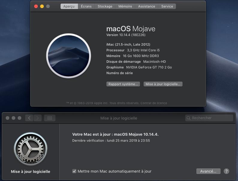 macOS Mojave 10.14.4 Finale version (18E226)  Captu559