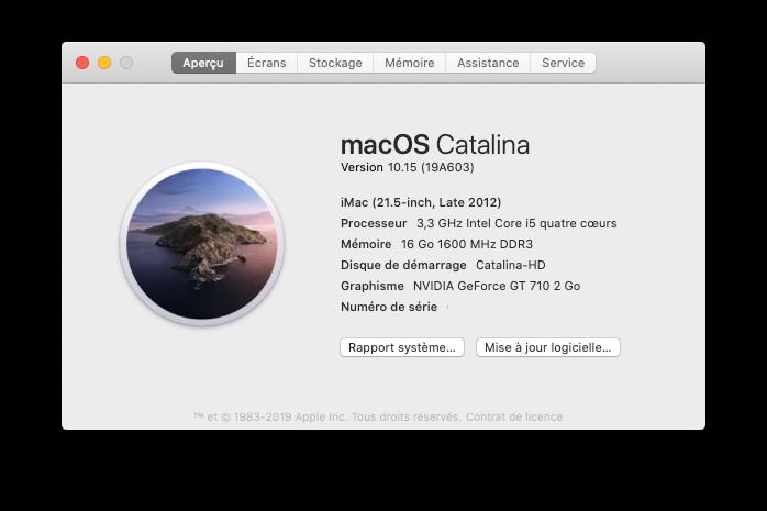 macOS Catalina 10.15 (19A603 Captu863