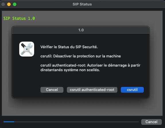 SIP Status Scree199