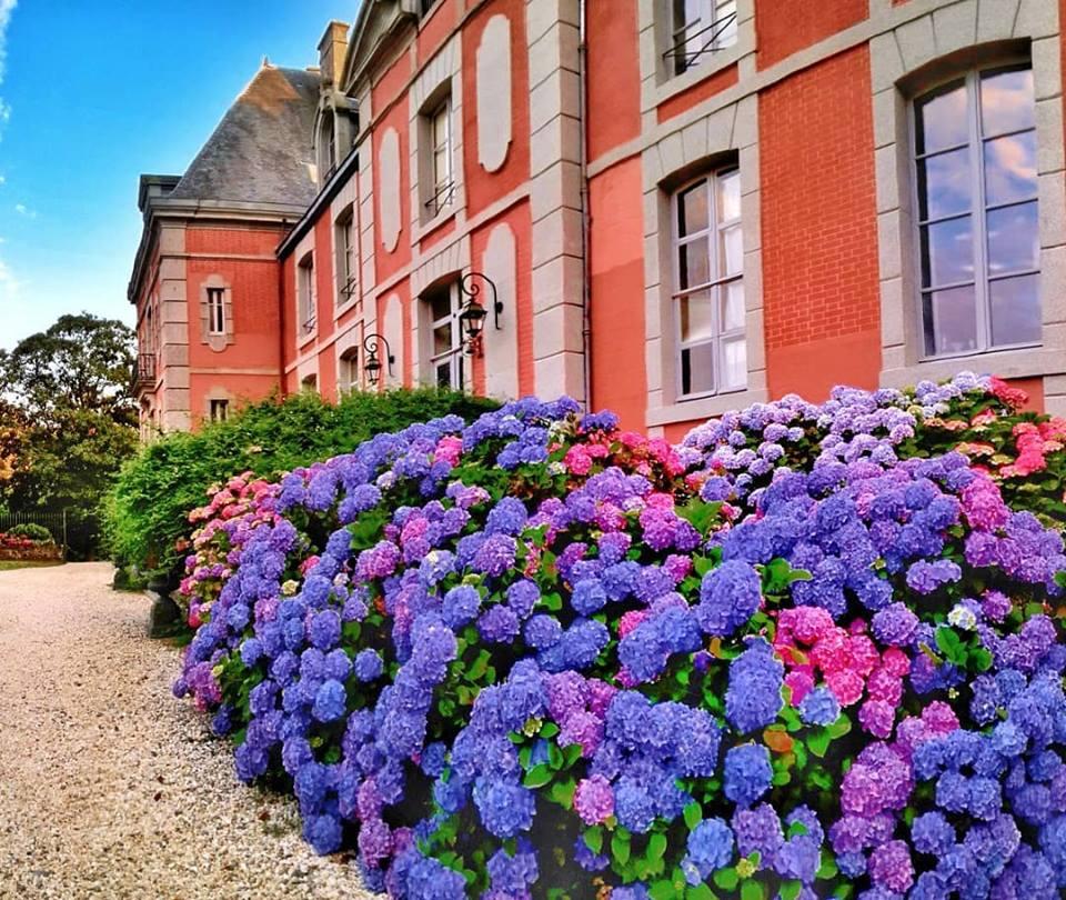 Les Chateaux Français 36800210