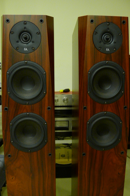 Focus Audio FC8 Floor Stand Loudspeakers (Used) SOLD P1150229