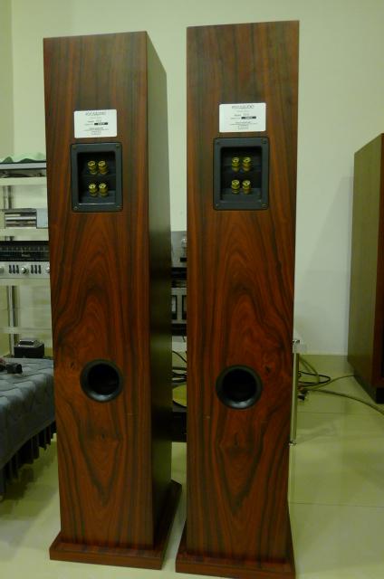 Focus Audio FC8 Floor Stand Loudspeakers (Used) SOLD P1150230