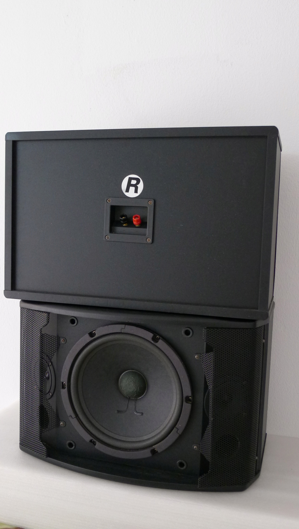 dB Pro Karaoke Speakers (Used) SOLD P1150434