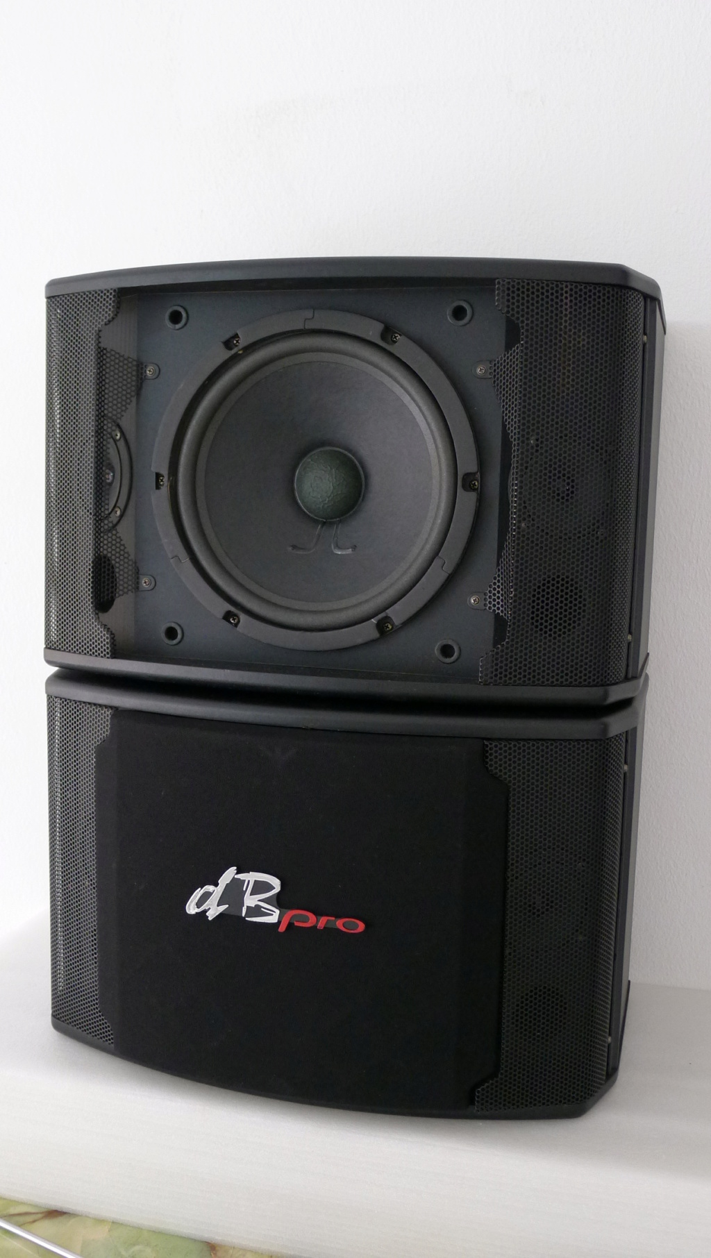 dB Pro Karaoke Speakers (Used) P1150435