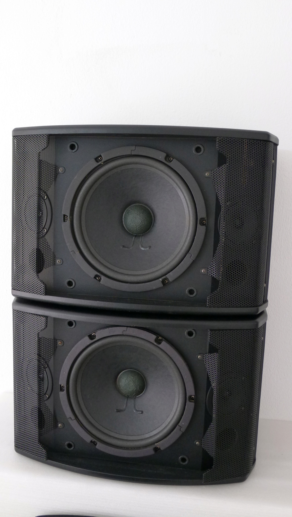 dB Pro Karaoke Speakers (Used) P1150436