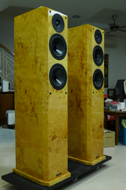 Focus Audio FS888 Signature Series Floorstand Loudspeakers (Used) P1150812