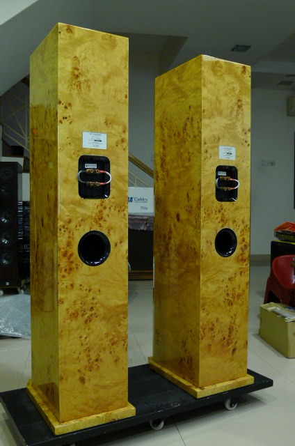 Focus Audio FS888 Signature Series Floorstand Loudspeakers (Used) P1150813