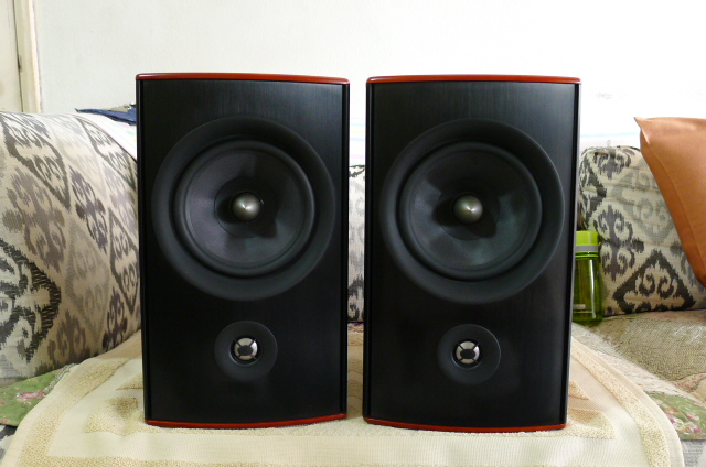 PSB top series Synchrony One B Loudspeakers (Used) P1160325