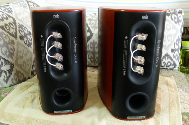 PSB top series Synchrony One B Loudspeakers (Used) P1160327
