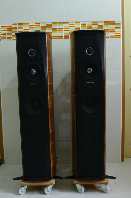 Sonus Faber Olympica II Floorstand Speakers (Used) P1160413