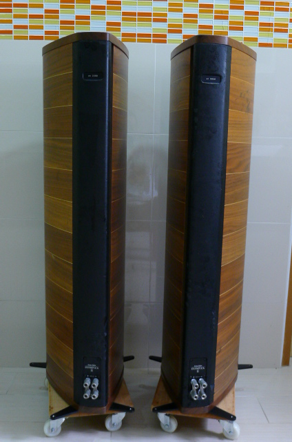 Sonus Faber Olympica II Floorstand Speakers (Used) P1160415