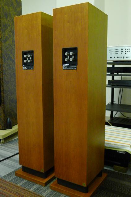 ProAc Response D30 (Ribbon) Floorstand Speakers (Used) P1160620
