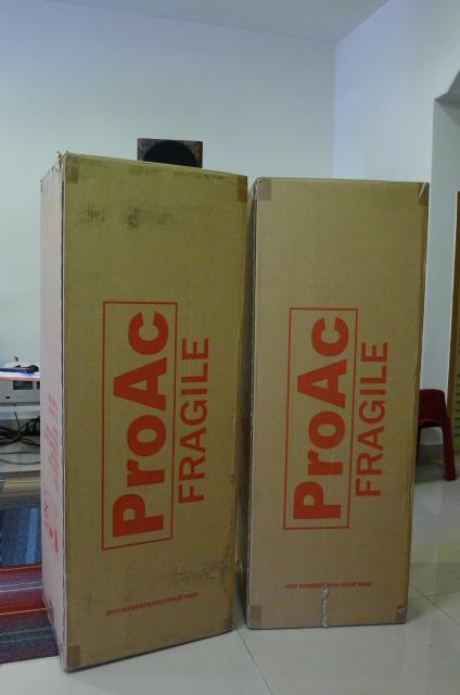 ProAc Response D30 (Ribbon) Floorstand Speakers (Used) P1160621