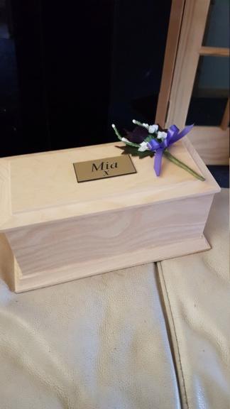 RIP MIAMOO 20191010
