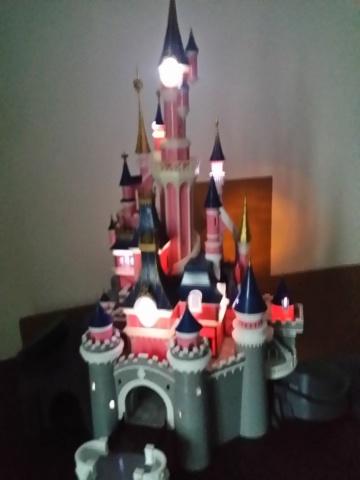 Maquette du château de la Belle au bois dormant de Disneyland Paris - Page 7 2018-127