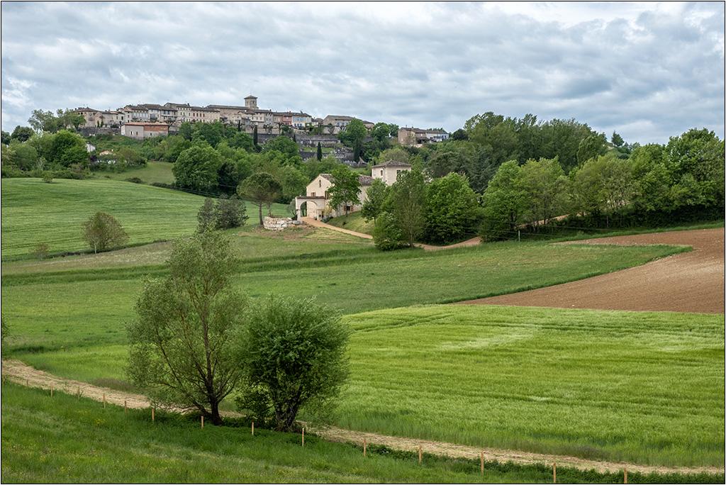 Castelneau de Montmiral + ajout  Dscf2130