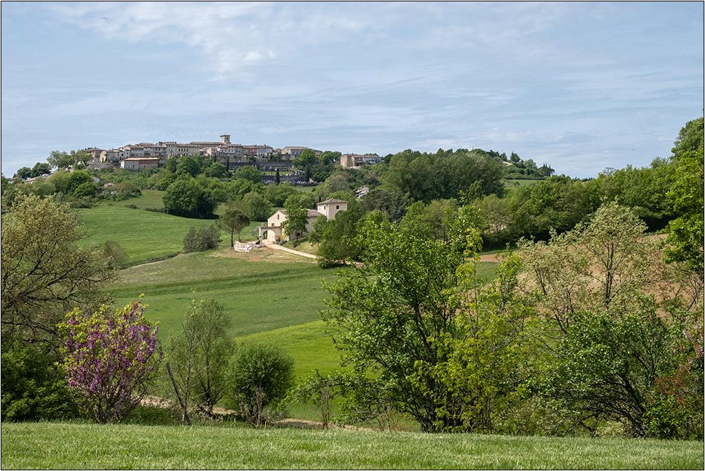 Castelneau de Montmiral + ajout  Dscf2132