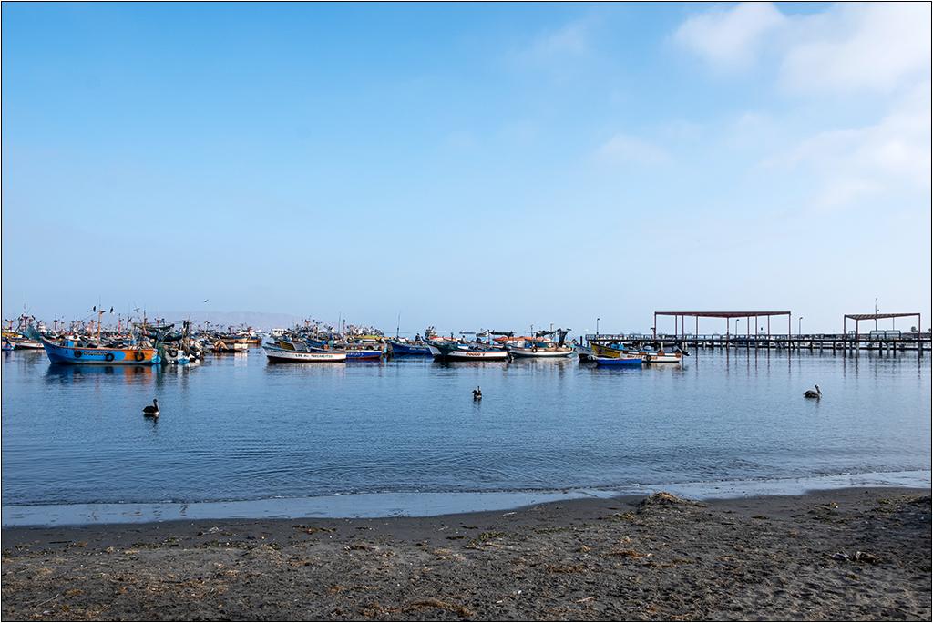 [Paysages] En bateau vers Paracas Dscf2813