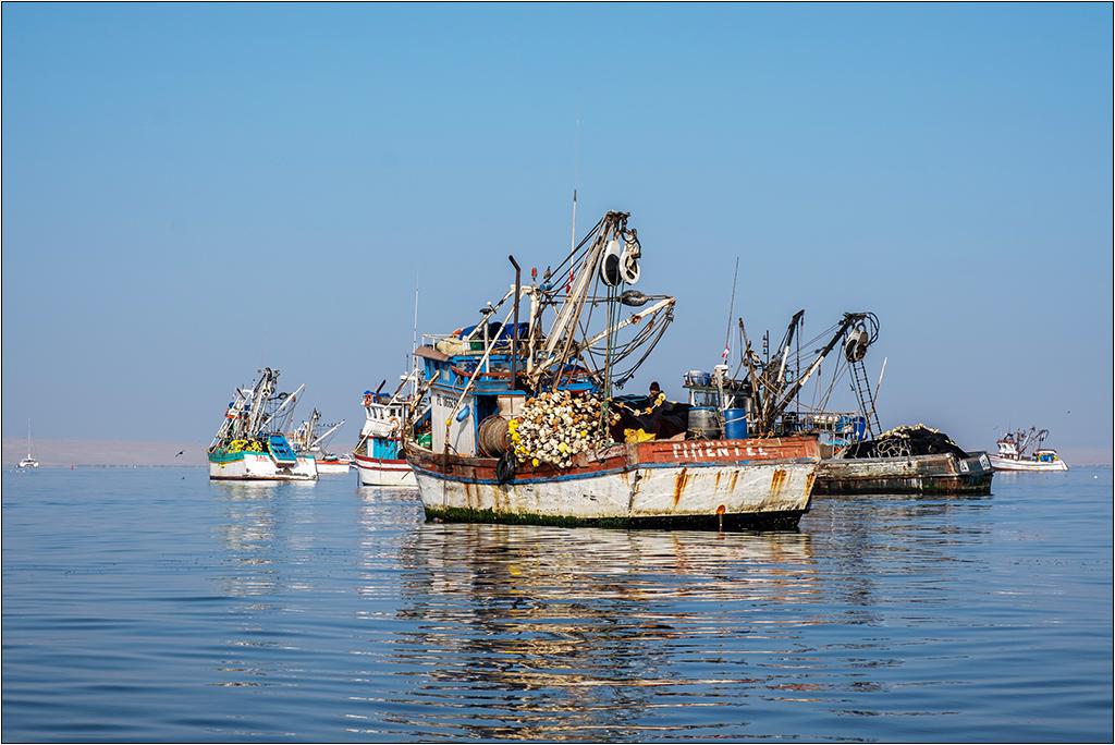 [Paysages] En bateau vers Paracas Dscf2816