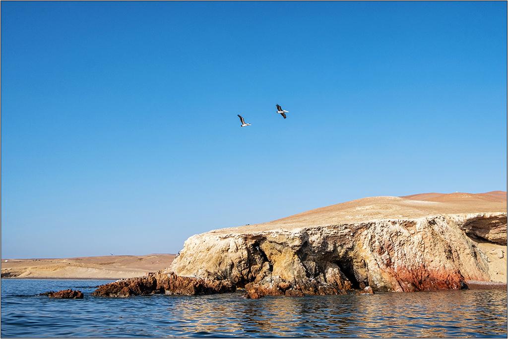 [Paysages] En bateau vers Paracas Dscf2818