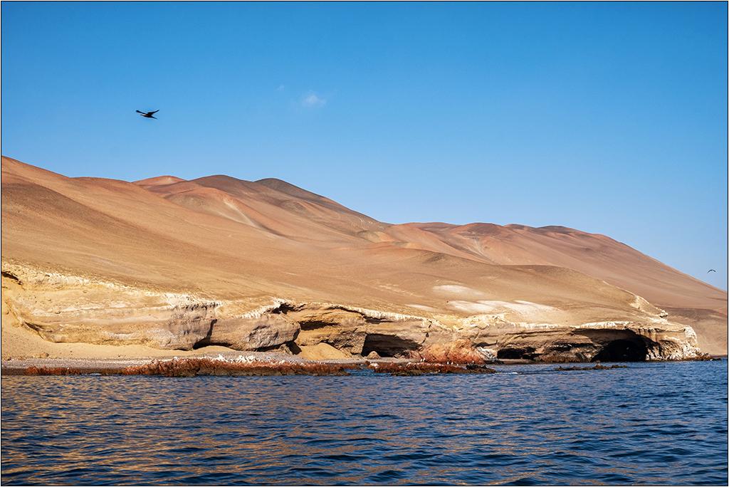 [Paysages] En bateau vers Paracas Dscf2819