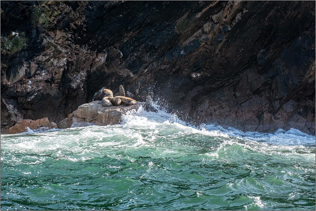 [Paysages] En bateau vers Caracas Dscf2914