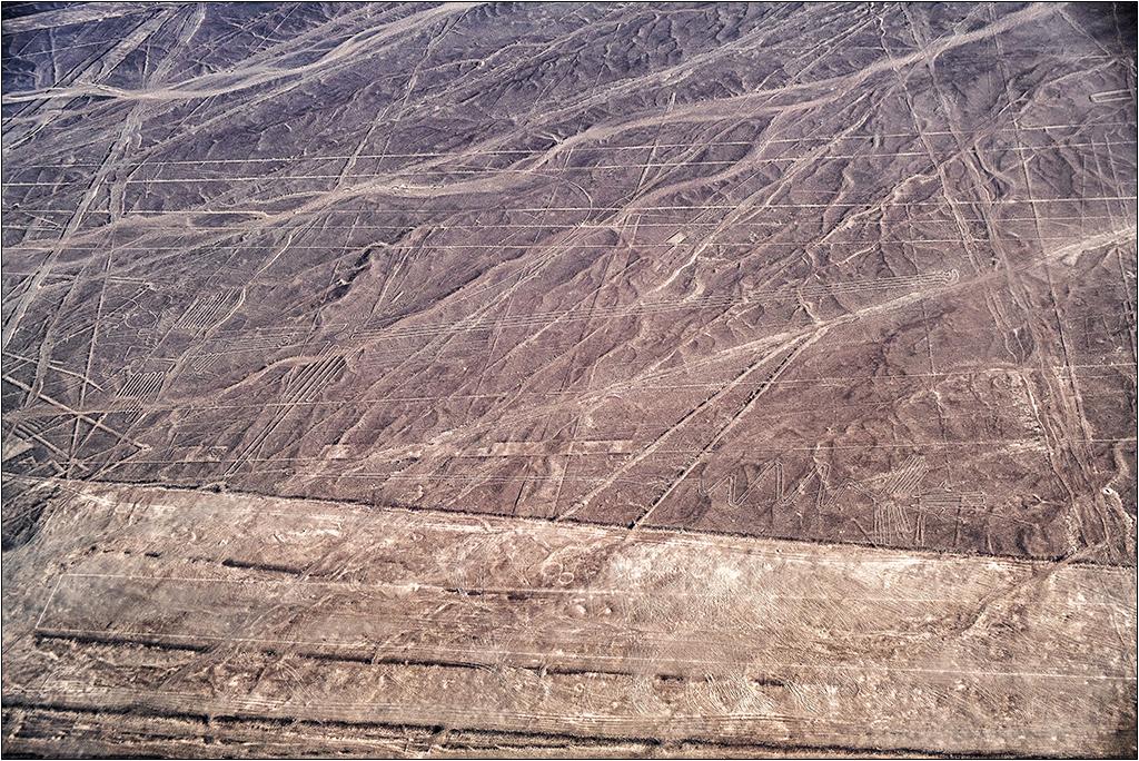 Les lignes de Nazca vues d'avion Dscf3118