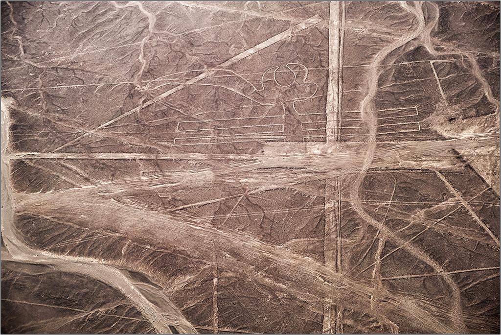 Les lignes de Nazca vues d'avion Dscf3120